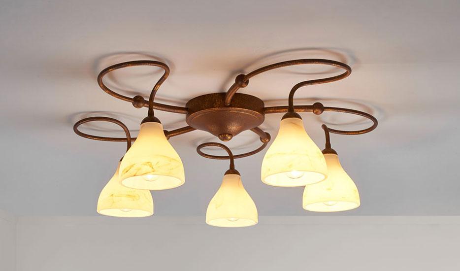 plafondlampen landelijk