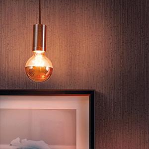 E27 LED lichtbron