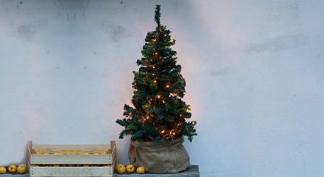 Oh kunstdennenboom – wat zijn je lichtjes wonderschoon