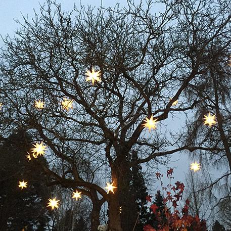 Kerststerren met verlichting