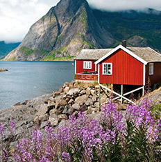 Interieurweken scandinavisch